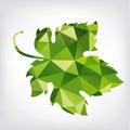 Grape leaf in polygon style