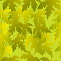 Grape leaves seamless pattern Royalty Free Stock Images