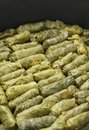 Grape leaves stuffed rolls green plate Stock Image