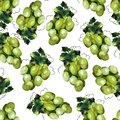 Green grape pattern