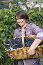 Grape picker closeup of woman in vineyard during harvest season Stock Photo