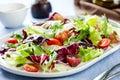 Grape with Radicchio and Rocket salad Royalty Free Stock Photo