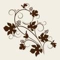 Grape vine beautiful silhouette. Royalty Free Stock Photo