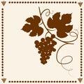 Grape vine silhouette. Royalty Free Stock Photo