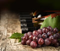 Grape and wine bottles vine branch shallow depth of focus Stock Photo