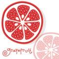 Grapefruit citrus fruits vector