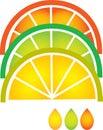 Grapefruit, lemon, lime and orange slices Stock Photo