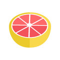 Grapefruit Vector Illustration In Flat Style Design. Royalty Free Stock Photo
