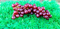 Grapes on artificial turf stock photo Royalty Free Stock Image