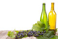 Grapes and bottles on wooden plank vine with leaves with empty wine sitting with an isolated white background Royalty Free Stock Photos