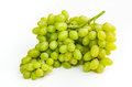 Grapes brunch closeup isolated on white background Stock Images