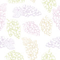 Grapes fruit graphic color seamless pattern sketch background illustration