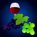 Grapes with a glass vector illustration of of wine Royalty Free Stock Images