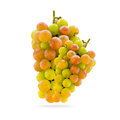 Grapes a grape is a non climacteric fruit specifically a berry and from the deciduous woody vines of the genus vitis Royalty Free Stock Images