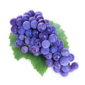 Grapes isolated on white Royalty Free Stock Photo