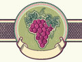 Grapes vector vintage label background old card Royalty Free Stock Photos