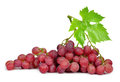 Grapes on white background Royalty Free Stock Images