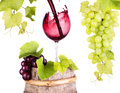 Grapes and wine glass on a wooden vintage barrel ripe isolated white background Stock Images