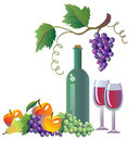Grapevine, wine and fruits Royalty Free Stock Image