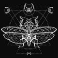Graphic decorative image of the Mantis. Sacred geometry. Esoteric, Mysticism, Sorcery.