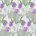 Graphic flowers blue tulip with lily on a gray background. Floral seamless pattern. Royalty Free Stock Photo