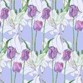 Graphic flowers lily and tulip on a blue background. Floral seamless pattern. Royalty Free Stock Photo