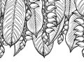 Graphic heliconia design