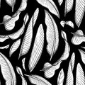 Graphic heliconia pattern