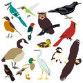 Graphic images of birds Royalty Free Stock Photos