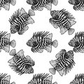 Graphic lion fish Royalty Free Stock Photo
