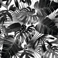 Graphic palm leaves seamless background Royalty Free Stock Photo