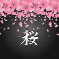 Graphic sakura card