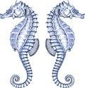 Graphic Seahorse