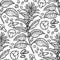 Graphic sesame pattern