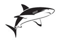 Graphic shark Royalty Free Stock Photo