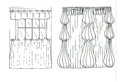 Graphic sketch drapery curtain on white Royalty Free Stock Images