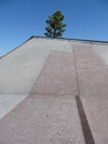 Graphical abstraction of concrete wall with tree a a the waterfront skate park in geelong australia Royalty Free Stock Photo