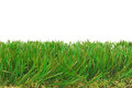 Grass artificial astro turf isolated border Royalty Free Stock Photo