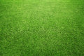 Grass background close up of perfect green at the field or back yard with copy space Stock Images