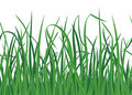 Grass background with seamless edge Stock Photos