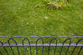 Grass behind small fence Royalty Free Stock Photo