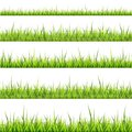 Grass border collection. Vector illustration on white background.
