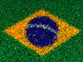 Grass brazil flag d on Royalty Free Stock Photography