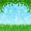 Grass bubble blower and leaves on the sky background Royalty Free Stock Photography