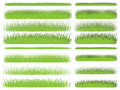 Grass collection Royalty Free Stock Image