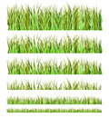 Grass Collection Stock Photos