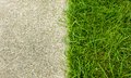 Grass and  concrete for background Royalty Free Stock Photo