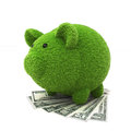 Grass covered piggy bank on top of money Royalty Free Stock Photos