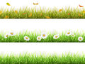 Grass in different seasons set