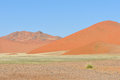 Grass and dune landscape near sossusvlei namibia in the tsaugab river floodplain Stock Image